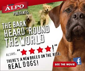 An Alpo Dog Food Ad